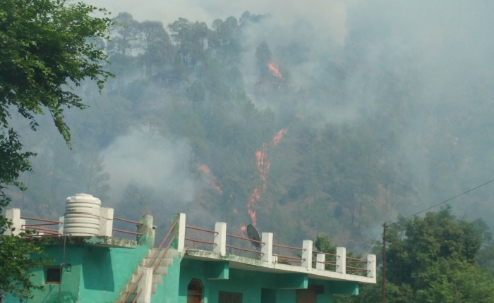 Uttarakhand Forest Fire Encounters – Part 1