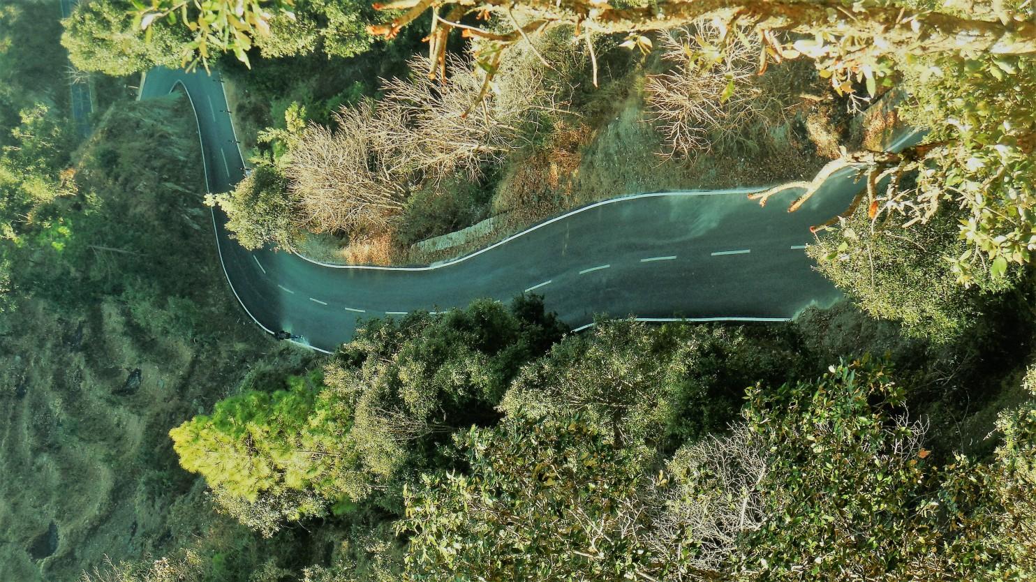 road-neo